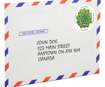 an address on an envelope